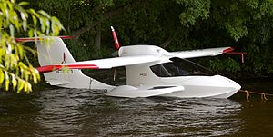 Icon A5 in the water.jpg