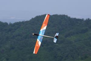 Pilot Nutmeg 2 Glider-10